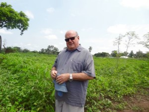 Br. Bill Firman stands in a field of cassava plants, part of the sustainable agriculture project that three years ago was bush land.